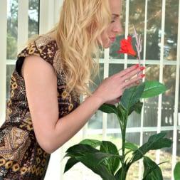 Affina Kisser in 'Anilos' Russian Milf (Thumbnail 1)