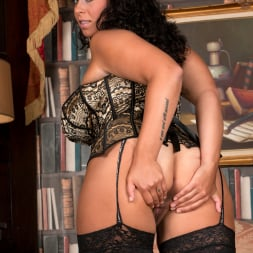 Anastasia Lux in 'Anilos' Sexy Fishnet Stockings (Thumbnail 10)