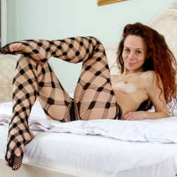 Anee Ocean in 'Anilos' Sexy Appeal (Thumbnail 9)