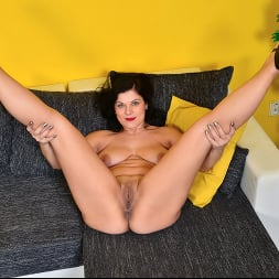 Belisa in 'Anilos' Stay Home Instead (Thumbnail 14)
