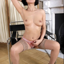 Black Kat in 'Anilos' Horny Housewife (Thumbnail 7)