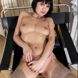 Black Kat in 'Anilos' Horny Housewife (Thumbnail 8)