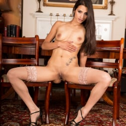 Chelsea French in 'Anilos' Milf In Action (Thumbnail 11)
