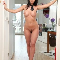 Cindy Dollar in 'Anilos' Seductive Cindy (Thumbnail 7)