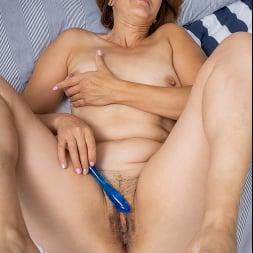 Eleanor in 'Anilos' Pussy Pleasures (Thumbnail 13)
