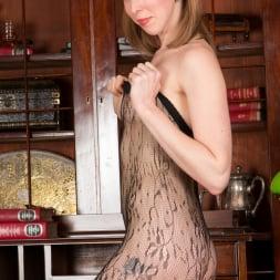 Katie White in 'Anilos' Lacey Pantyhose (Thumbnail 9)