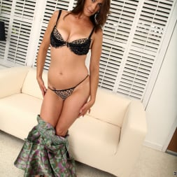 Mimi Moore in 'Anilos' Naughty Thoughts (Thumbnail 2)