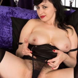 Nikita in 'Anilos' Lace And Stockings (Thumbnail 5)