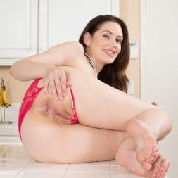 Sarah Shevon in 'Anilos' Classy Housewife (Thumbnail 8)