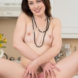 Sarah Shevon in 'Anilos' Classy Housewife (Thumbnail 13)